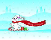 bunny skiing
