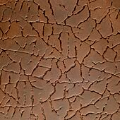Textured leather