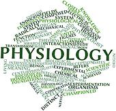 Word cloud for Physiology