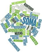 Word cloud for Soma
