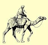 Bedouin riding a camel