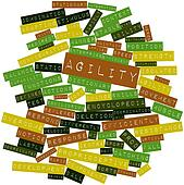 Word cloud for Agility