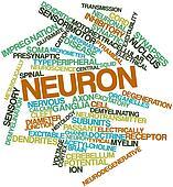 Word cloud for Neuron