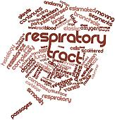 Word cloud for Respiratory tract