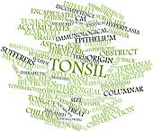 Word cloud for Tonsil