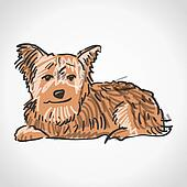 Yorkshire Terrier Clip Art - Royalty Free - GoGraph