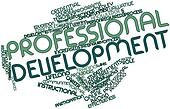 Word cloud for Professional development
