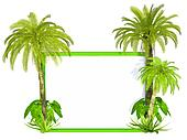 Palm trees frame