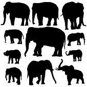 Elephant silhouettes on white background
