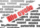business work of life cycle