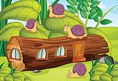 Snails and wood house