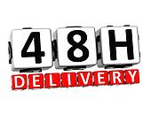 3D Forty Eight Hour Delivery Button Click Here Block Text