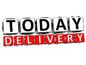 3D Today Delivery Button Click Here Block Text