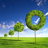 Green grass shape