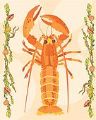 Lobster illustrative