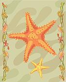 Starfish illustrative