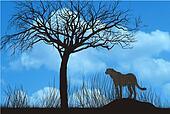 Cheetah under tree