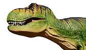 Tyranosaurus Rex Isolated