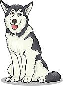 husky or malamute dog cartoon illustration