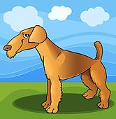 Airedale terrier dog cartoon illustration