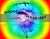 concept of bipolar disorder