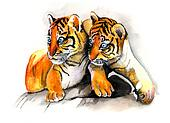 2 young tiger cubs