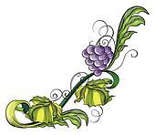 A grape vine border