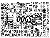 A Mixture of Dog Breeds