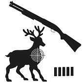 shotgun and aim on a deer