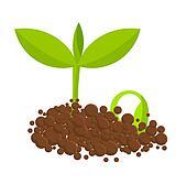 Germinal plants
