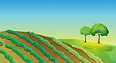 Agricultural land and trees