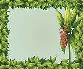 A green border