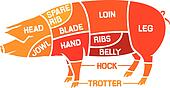 cuts of pork - meat diagrams
