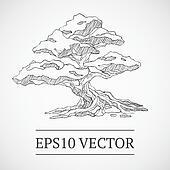 Sketched vintage bonsai tree