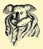cute koala hand drawing