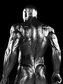 Steel muscle man