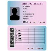 Driving Licence Clip Art - Royalty Free - GoGraph