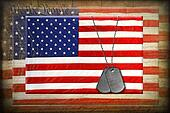 dog tags on American flags