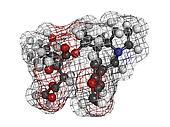 Omacetaxine mepesuccinate leukemia drug