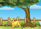 A young tiger under a big tree