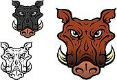 Wild boar or hog