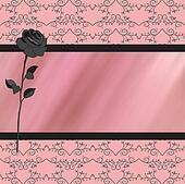 Gray pink rose