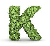 Letter K from green leaves