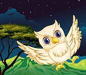 A nocturnal creature