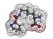 Pyrrolysine (Pyl, O) amino acid, molecular model.