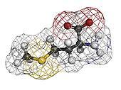 Methionine (Met, M) amino acid, molecular model.