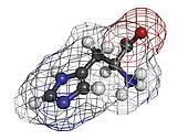 Histidine (His, H) amino acid, molecular model.