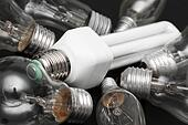 energy efficient bulb in the middle of old incandescent