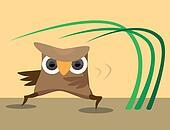 Karateka owl perform sport exercises