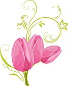 Three pink tulips with sprig